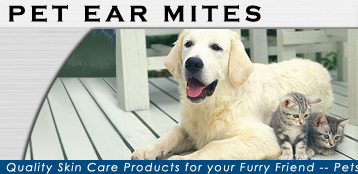 Ear mite facts