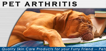 Pet Arthritis Treatment